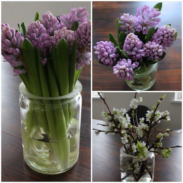 hyacinter og grene i gamle sylteglas #fine buketter i gamle glas