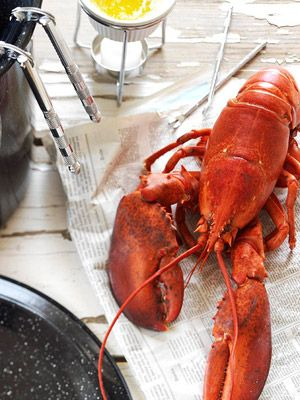 If you're intimidated by live lobsters, relax; they're easy to fix. Think about lobster prep like cooking corn on the cob -- just plunge them into boiling water. The whole process takes about 30 minutes using these step-by-step directions.