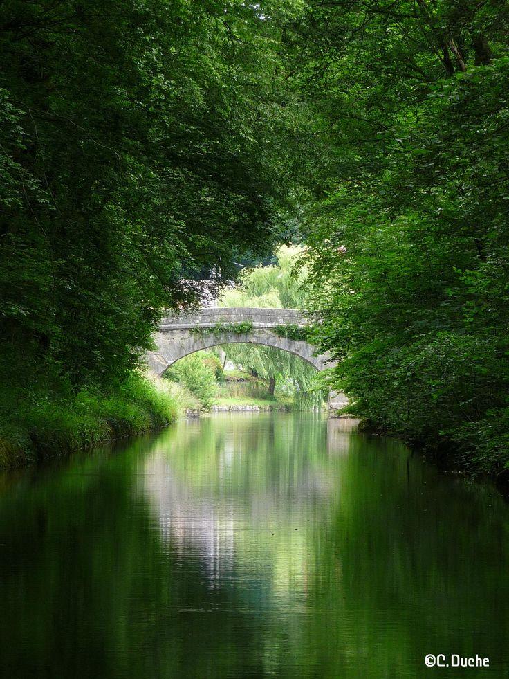 Paysage verdoyant le long du Canal du Nivernais! ©C.Duche