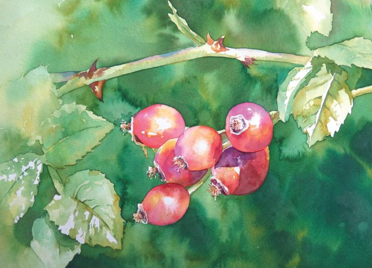 82 best Learn Watercolour Painting Step by step images on