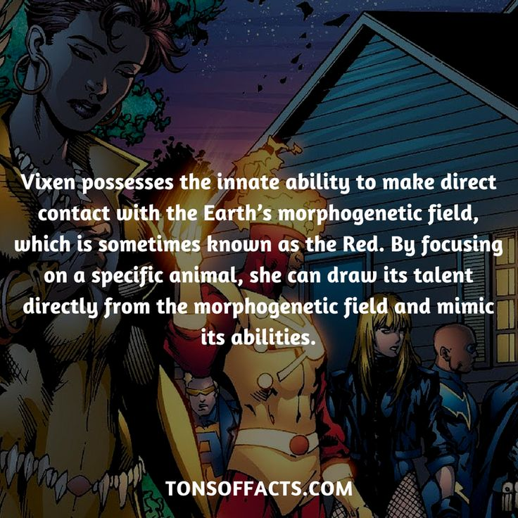 She possesses the innate ability to make direct contact with the Earth's morphogenetic field, which is sometimes known as the Red. By focusing on a specific animal, she can draw its talent directly from the morphogenetic field and mimic its abilities. #vixen #tvshow #justiceleague #comics #dccomics #interesting #fact #facts #trivia #superheroes #memes #1 #movies
