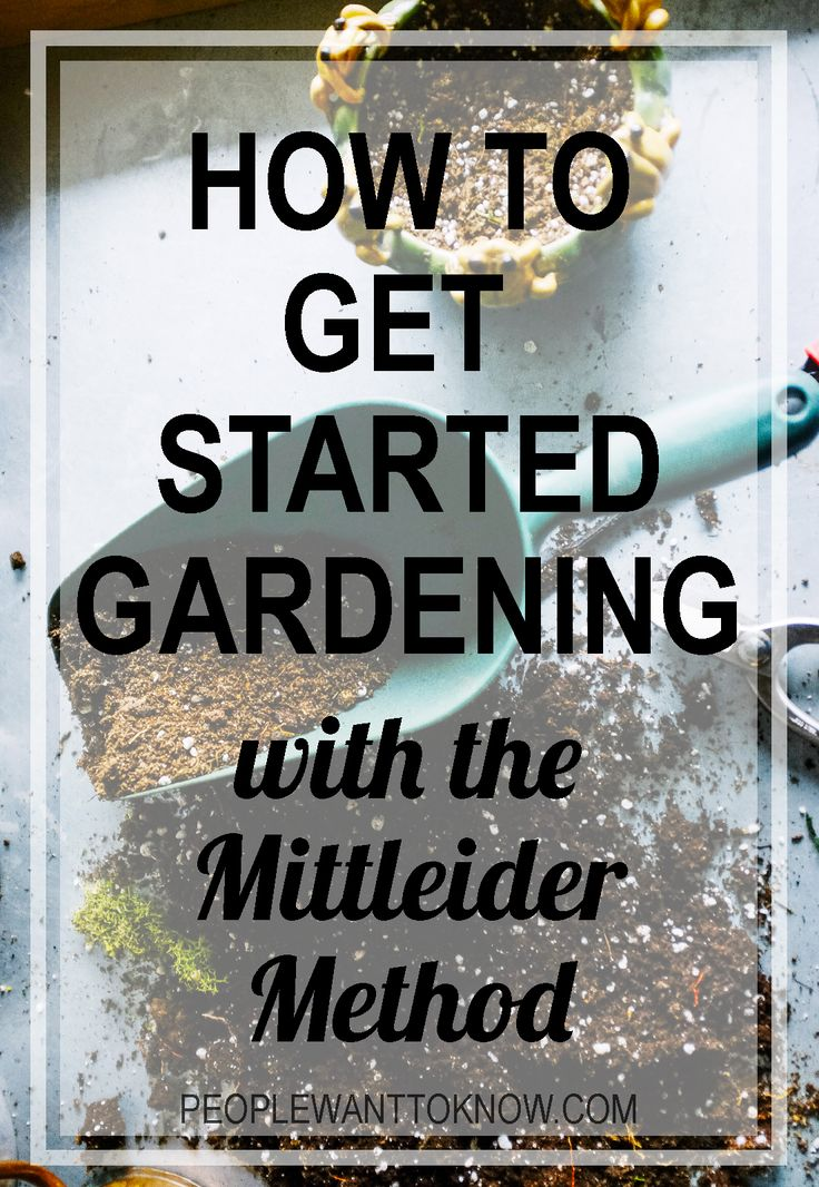 How to get started Gardening with the Mittleider Method_Hero