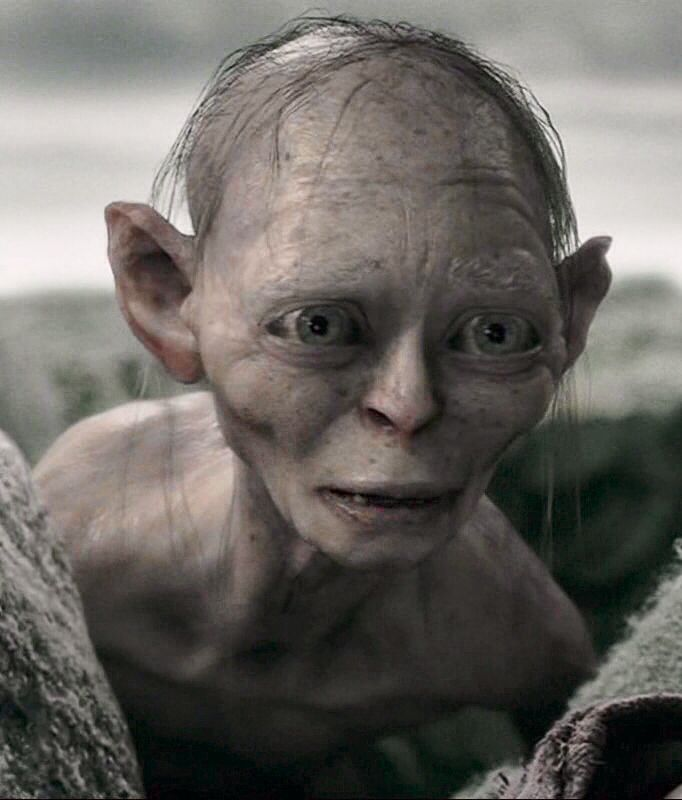 Smeagol just the look on his face when he sees Mordor again. After all he went through there. #MiddleBackPain