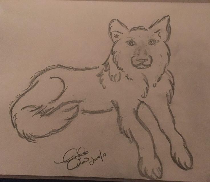Quick pencil draw wolf
