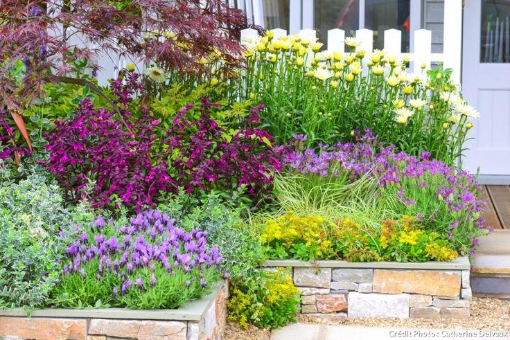 Des jolis massifs devant la maison rable japonais for Petit jardin devant maison