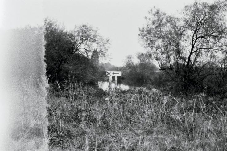 A Sign pointing to the left at the Attenborough Nature Reserve in Nottingham, England