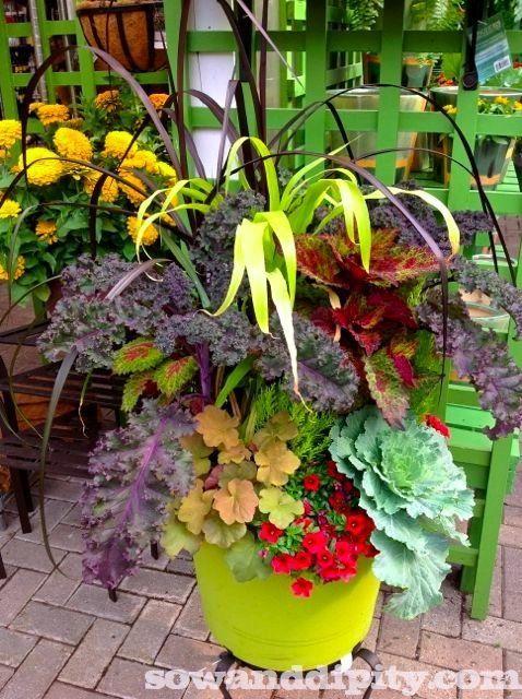 14 Gorgeous Fall Planter ideas