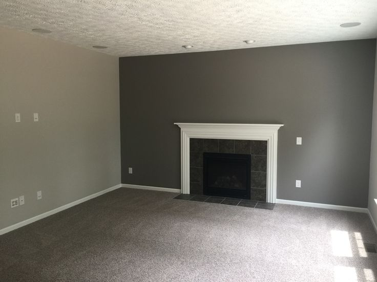 Went with Sherwin Williams Agreeable gray, Dovetail gray with the gray carpet.