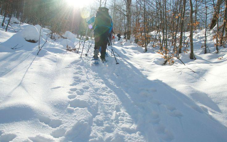 Snowshoeing in Grykat e Hapta