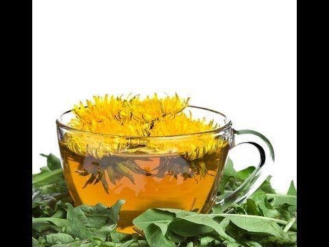 ▶ DANDELION FLOWER TEA BENEFITS: Health Benefits | Side Effects - YouTube