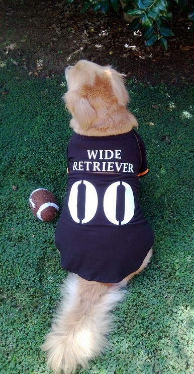 """Bernard is ready for some football!""  This is too cute..."