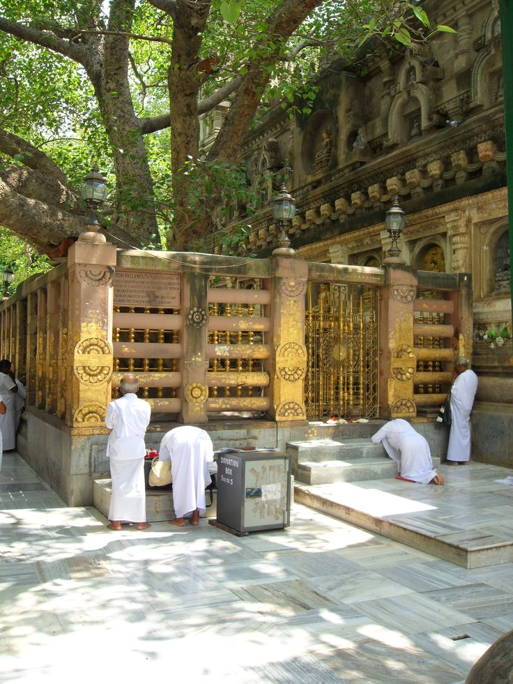 Buddha's Enlightenment at Bodhitree Bodhgaya, Bihar, India