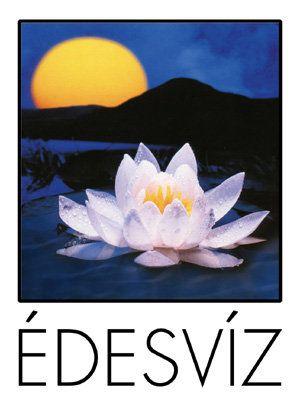 www.facebook.com/Edesviz
