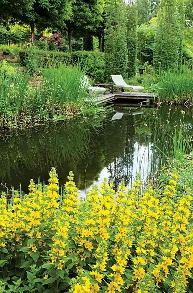 17 meilleures id es propos de patio petit pont sur for Jardins tropicaux contemporains