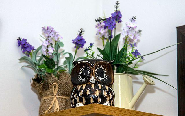 Smartie Owl decorating Helen Doron Sofia West.