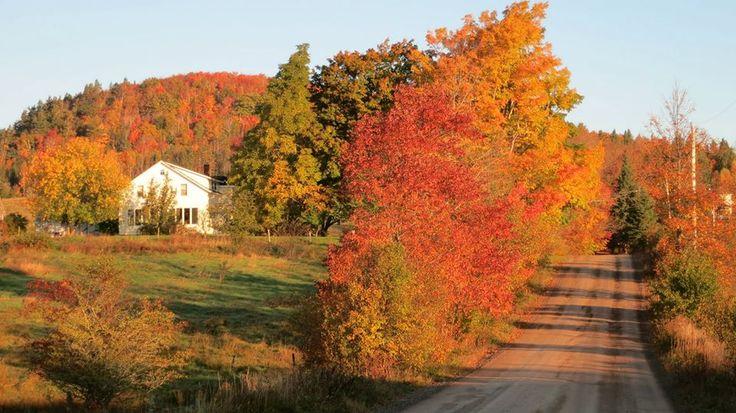 Fall colours near Middleton, Nova Scotia