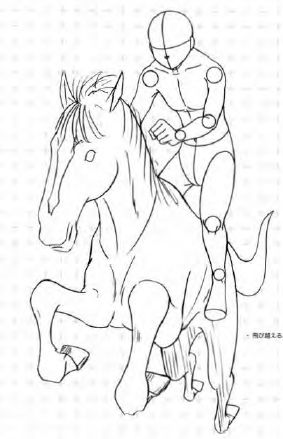 Excellent reference for horse rider