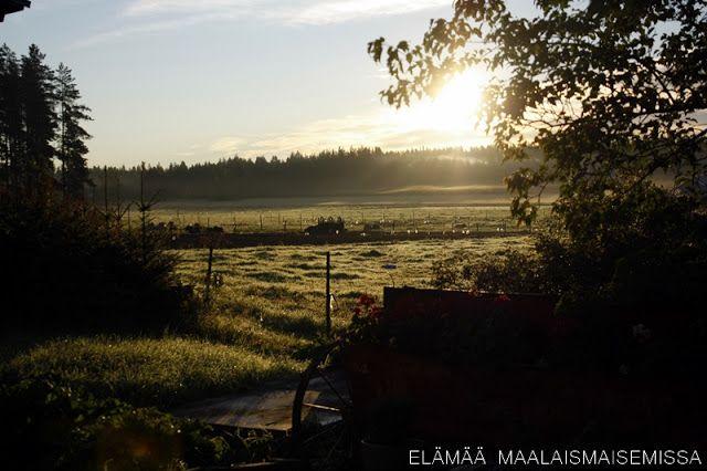 Elämää maalaismaisemissa: Suomen Luonnon päivä