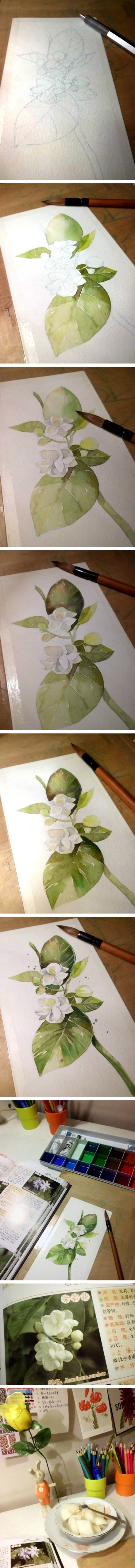 Step by step watercolour of jasmine
