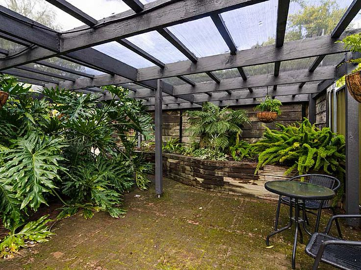 63 best images about Fernery ideas on Pinterest | Backyard ...