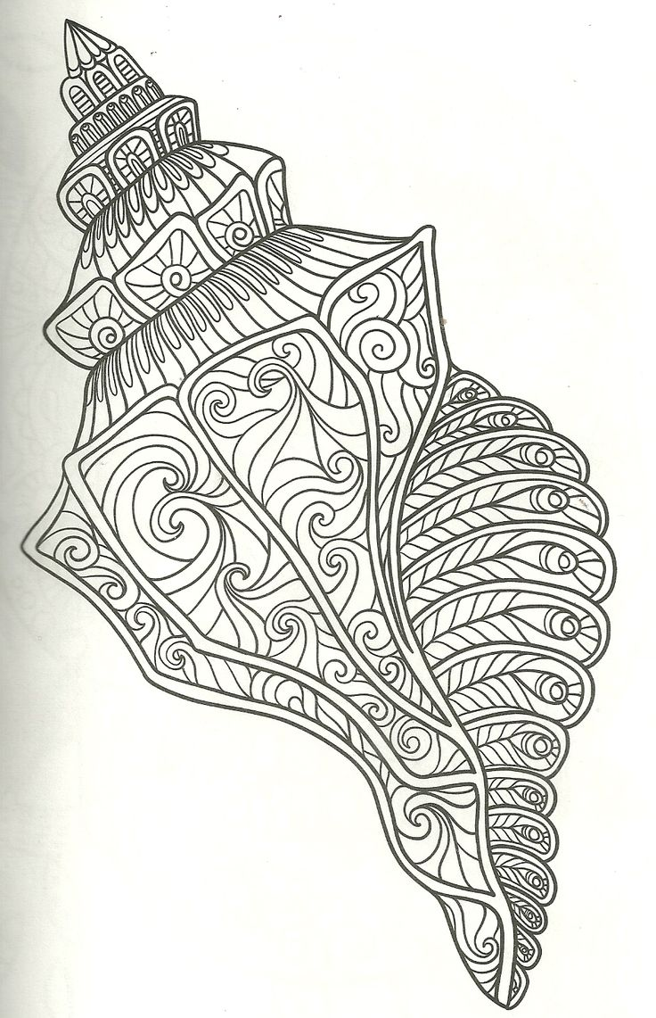 126 best my coloring pages images on pinterest for Clam coloring page