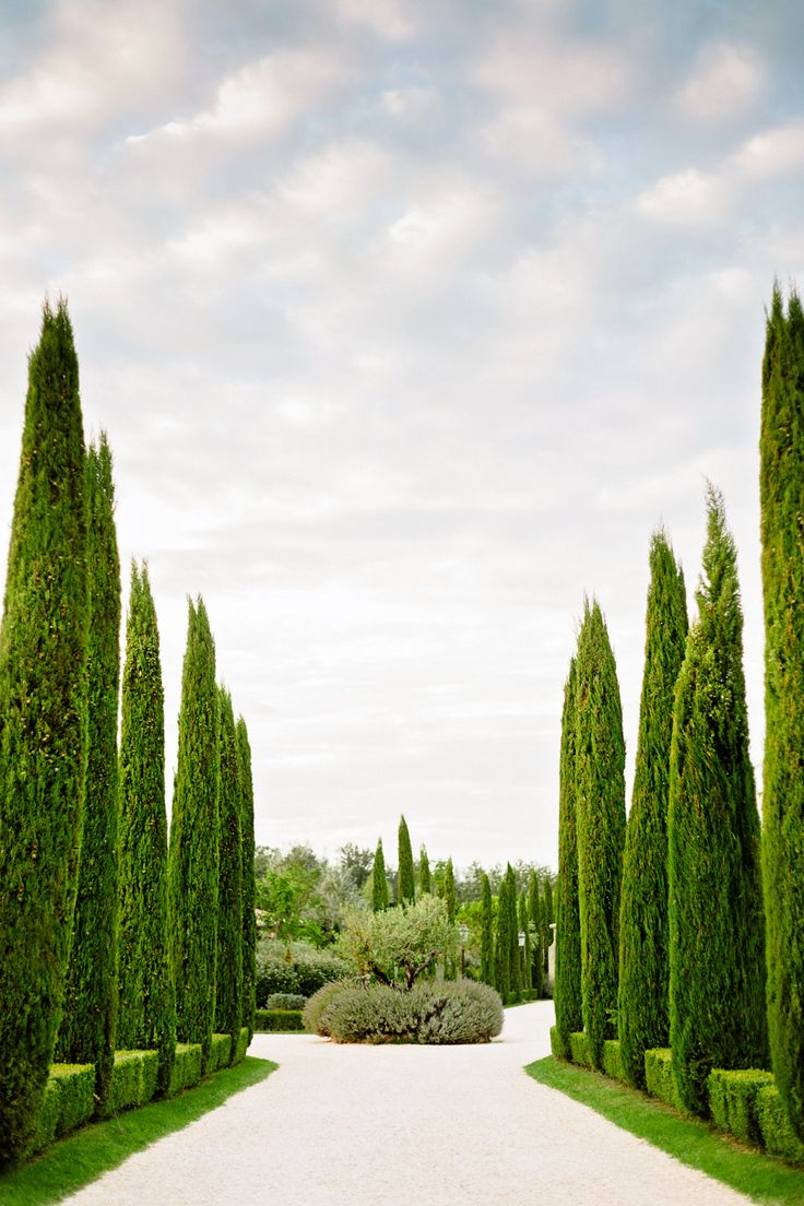 Romantic Tuscany Villa Elopement Backyard garden design