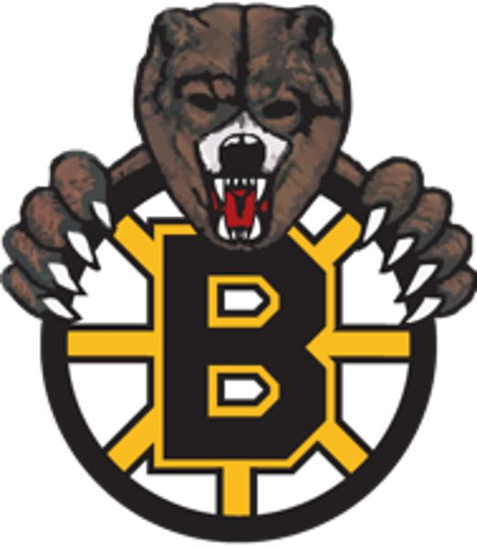 2nd year Junior Bruins NCDC goaltender Elijah Harris has committed to Endicott College. Endicott is the 2nd ranked NCAA Division III team in the country with a record of 12-3-1. Located in Beverly, Massachusetts Endicott boasts a beautiful campus, new rink on site and terrific internship opportuniti