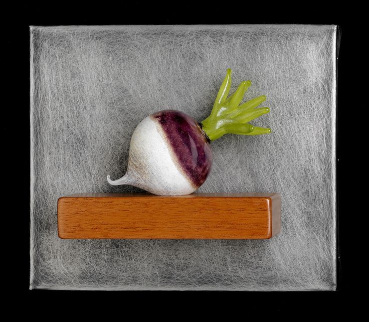 Art Glass,  'Single Turnip Still-Life', wall sculpture composed of hand blown glass turnip, stainless steel and mahogany. www.jenviolette.com