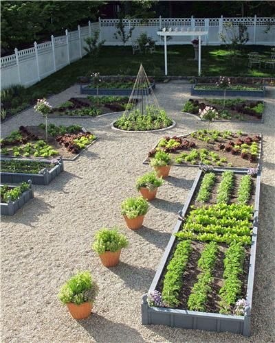 Vegetable gardens come in all shapes and sizes, from simple potted designs to larger raised garden designs.  Susan Cohan Gardens.  LandscapingNetwork.com