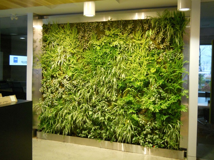 A Living Green Wall Looks Good And Is Environmentally Friendly Too