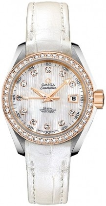 Omega Aqua Terra Ladies Automatic 231.28.30.20.55.001