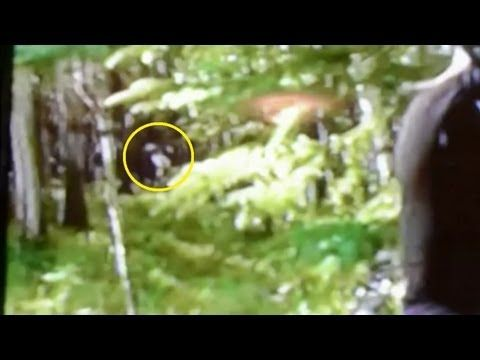 Breakdown: Mantracker Bigfoot Video