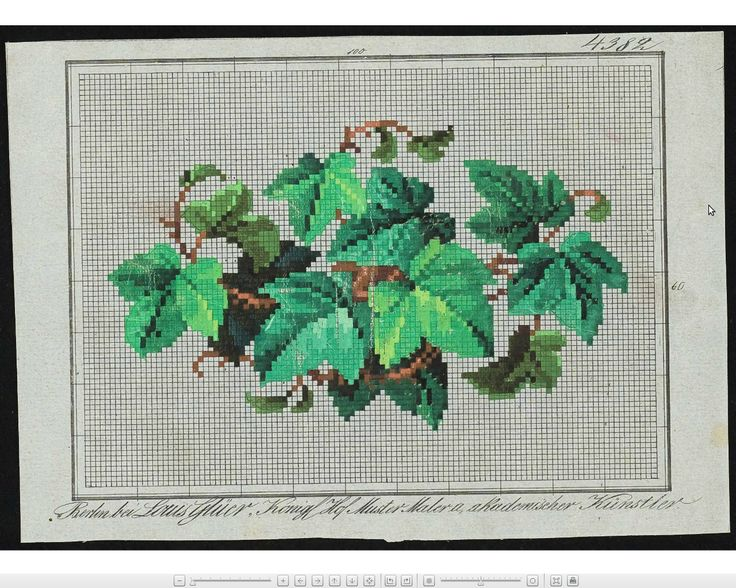 Berlin woolwork chart: Ivy, symbol of loyalty (it clings).