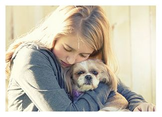 Animal communication with Faye Fletcher - a pet psychic who can help you with animal problems through animal telepathy and talk. http://www.animalspeak.com.au/