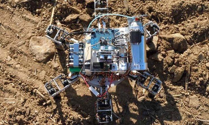 Robots agricultores ¿Solución al hambre mundial?