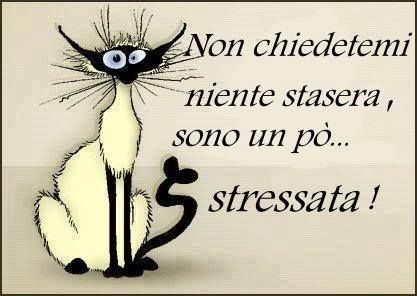 Non chiedetemi niente stasera, sono un pö... stressata!  ~~~ Do not ask me anything tonight, I am a little stressed out!