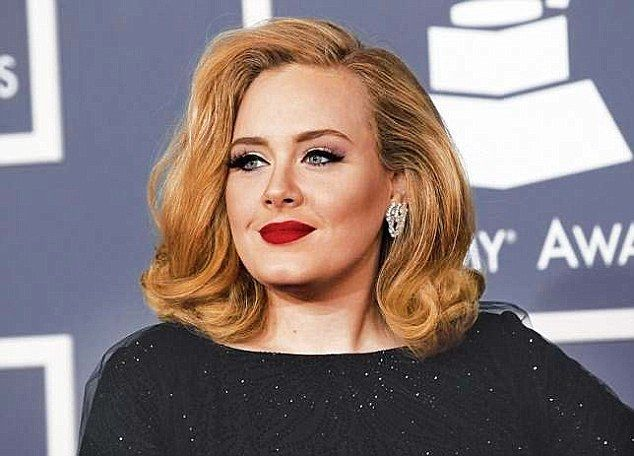 Sorry: Adele has apologised to a fan who was rushed to hospital after sustaining an injury...
