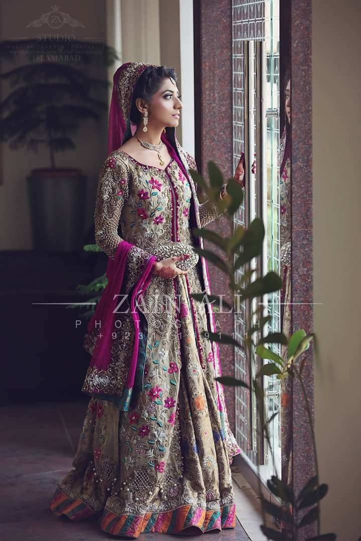 Pakistani bridal                                                       …
