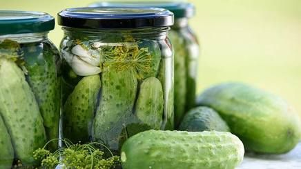 Pickles For The Brain!  The new super brain food that'll help your brain work better is… pickles? A recent study led by the College of William and Mary in Virgina has revealed that naturally fermented food like dill pickles, kimchi, yogurt, and sauerkraut may provide your brain with a boost of gamma-aminobutyric acid or GABA—a neurotransmitter that controls anxiety and whose function is mimicked by anti-anxiety drugs like benzodiazepines.