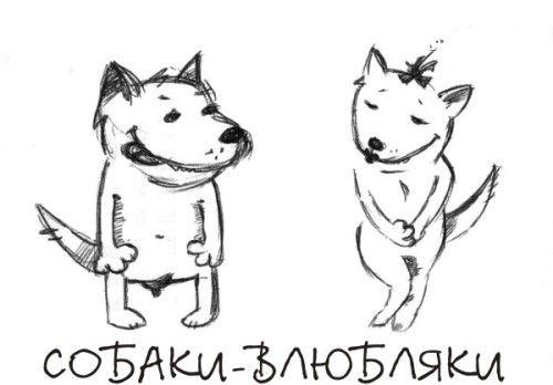 Смешные видео ролики с собаками, приколы