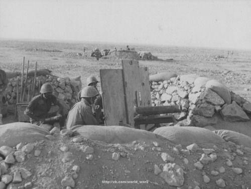 Italian artillery 65-mm mountain gun cannone da 65/17 in position in North Africa.
