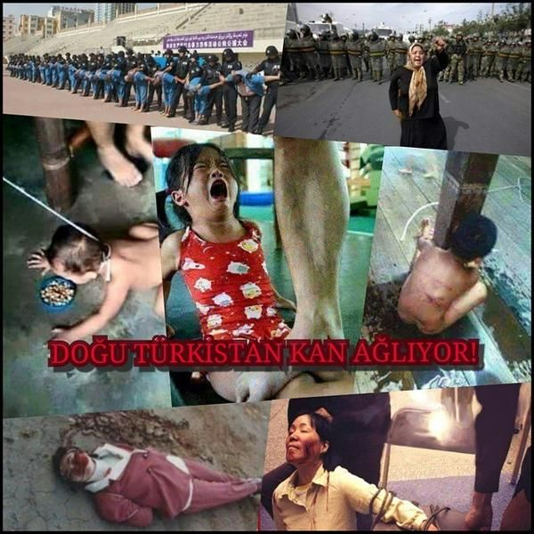 @GokhanMHP @Dilara_MKA Let's not quiet please the Chinese torture  #StopTerrorismInChina