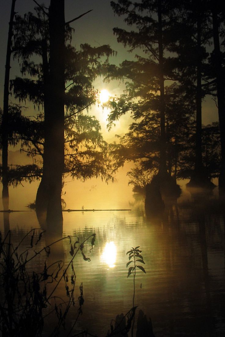 948 best my majestic mississippi images on pinterest mississippi bluff lake mississippi united states roger smith arubaitofo Image collections