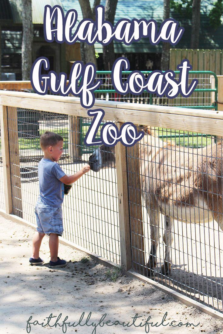 Alabama Gulf Coast Zoo #albeachblogger gulf shores alabama trip to the zoo full time rv living camper life pangani tribe faithfully beautiful