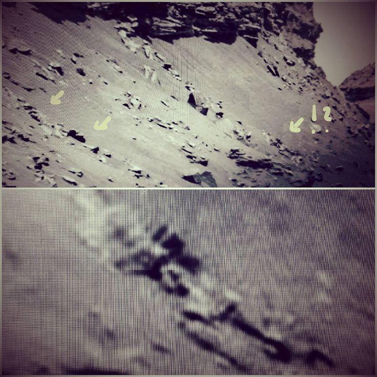 "Gefällt 7 Mal, 2 Kommentare - Mars Anomalien (@lilithonmars) auf Instagram: ""SKELETT ?#mars #marsanomalien #space #moon #lost #alien #ufo #unglaublich #ancient #sol…"""