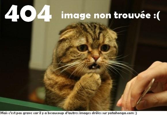 defaultw_media.jpg (580×401)
