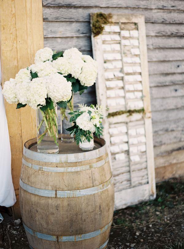 White flower hyndrangea