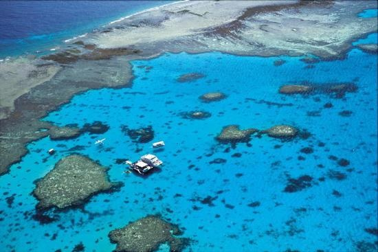 Great Barrier Reef -  Lady Musgrave Island  #Australia