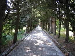 Filerimos Hill