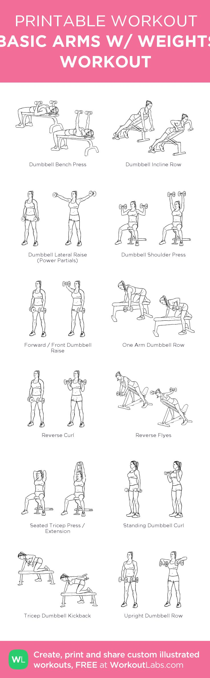 BASIC ARMS W/ WEIGHTS WORKOUT